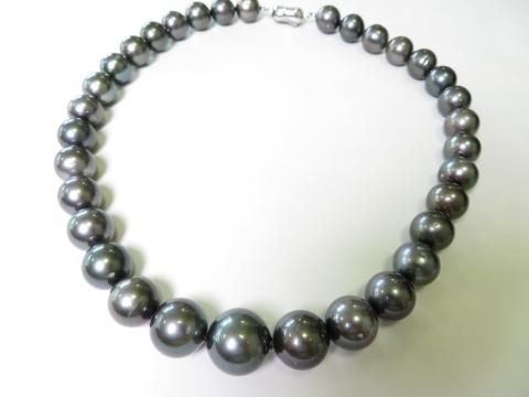 南洋真珠も人気